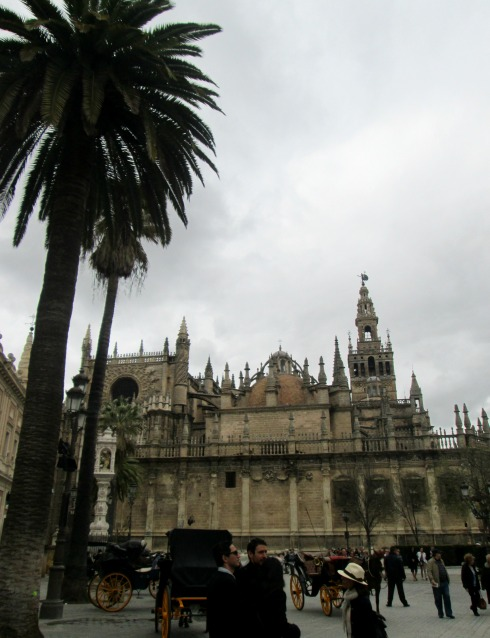 Cathedral and palm