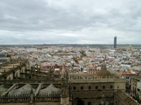 City view (2)-7