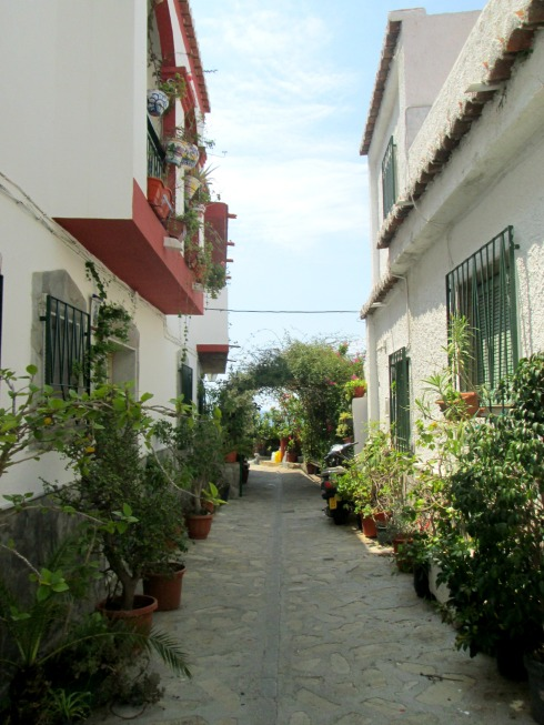 Green street--8